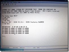 STG_Elf2K_first_terminal_screenshot