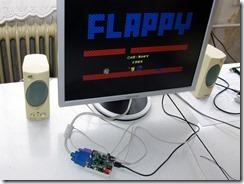 STMZ800_running_Flappy