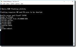 Z-Berry_flash_program_scr